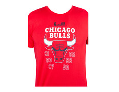 New Era NBA Team Champion Chicago Bulls Tee 62c79151ab7